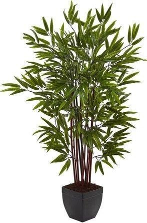 Alta bamboo silk tree green