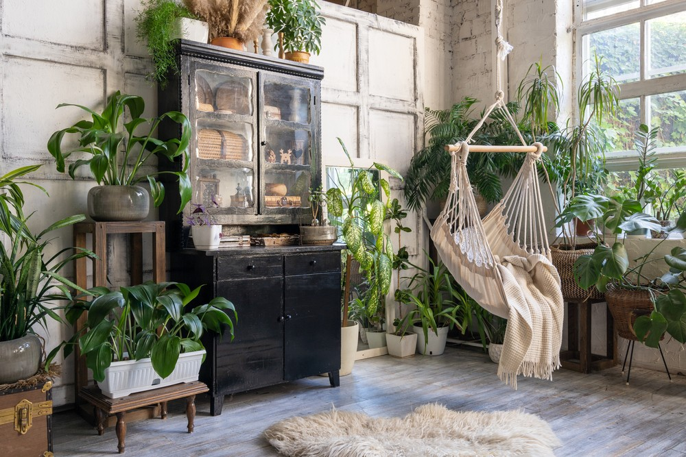 Cozy rope swing in living room with green houseplants in flower pot and black vintage chest of drawers